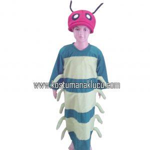 Kostum Ulat