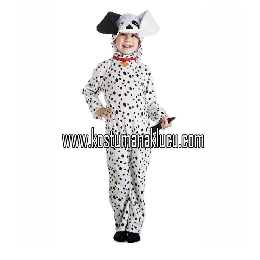 kostum anjing