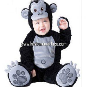 kostum babi
