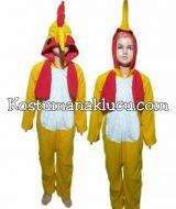 Jual Kostum Anak Lucu Binatang Ayam